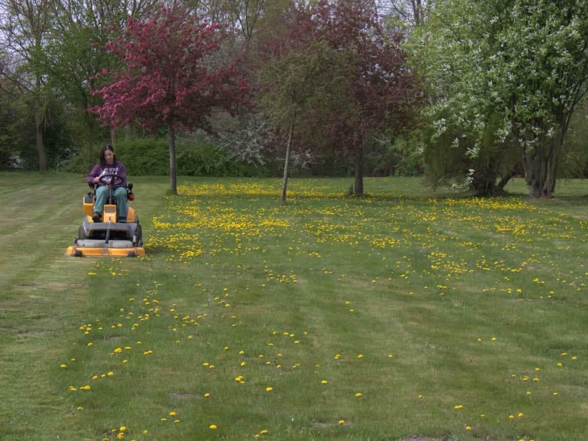 Gärtner/in im Garten- und Landschaftsbau